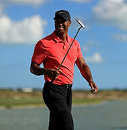 AG News: Tiger's return just like old times