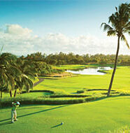 american golf News: UK & Ireland's leading amateur golfers head to Mauritius for Tournament of Champions